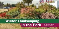 Winter landscaping in the Park